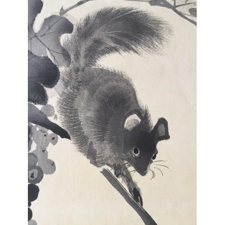 Gyokushô Kawabata - l'écureuil